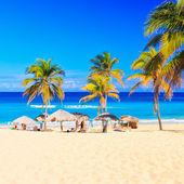 Fotografie doškovými slunečníky na krásné pláži varadero na Kubě