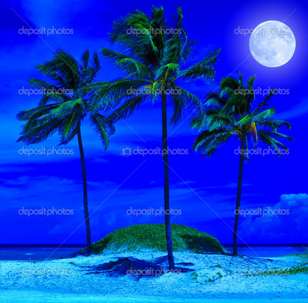 Beautiful beach at night with a bright full moon
