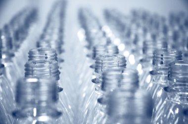Rows of empty bottles