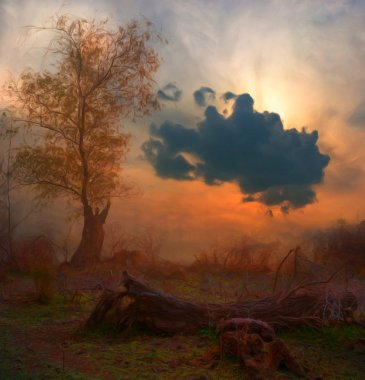 Landscape painting showing creepy tree at dark cloudy autumn morning