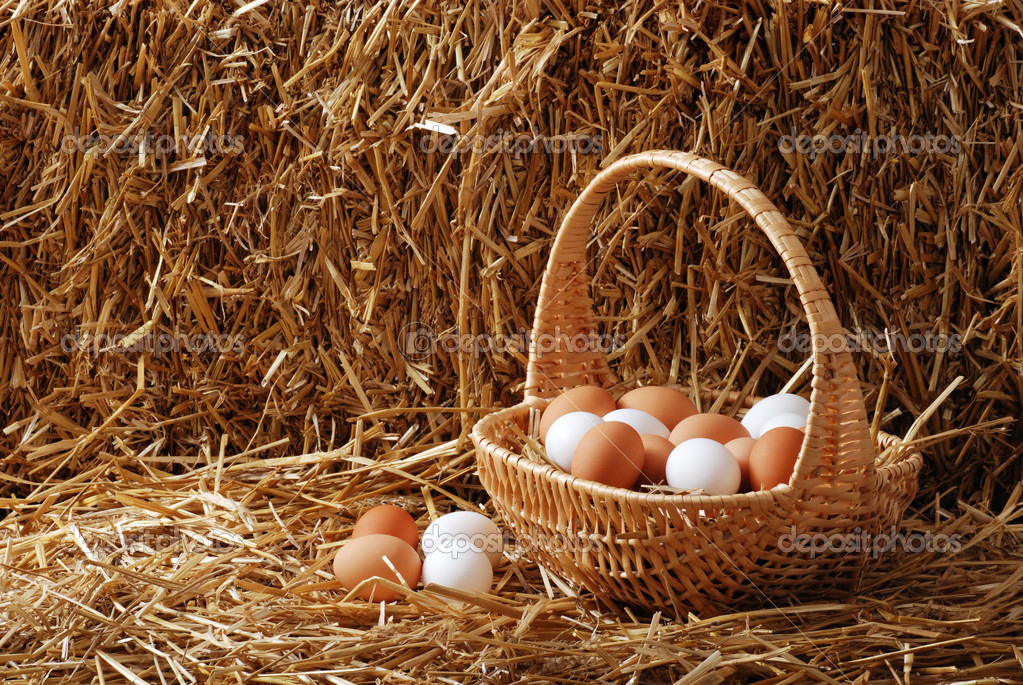 7/15/18-7/21/18 Depositphotos_8603747-stock-photo-brown-and-white-eggs-in