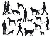 Gyaloglás a kutyák
