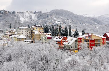 Winter landscape of Sochi