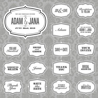 Vector Ornate Frame Set and Victorian Background