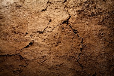 Texture background - dry cracked brown earth
