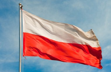 Flag from poland