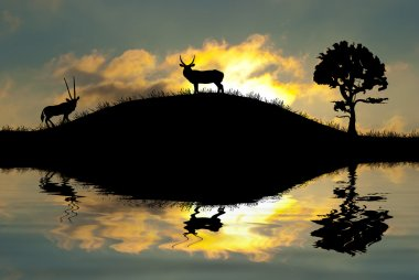 Safari in Africa. Silhouette of wild animals reflection in water.