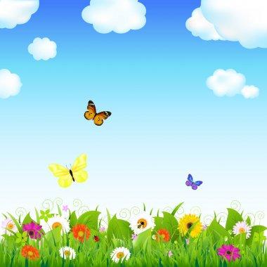 Flower Meadow With Butterflies