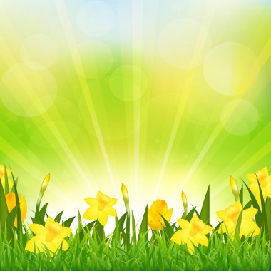 Flowers Easter Background, Vector Background stock vector
