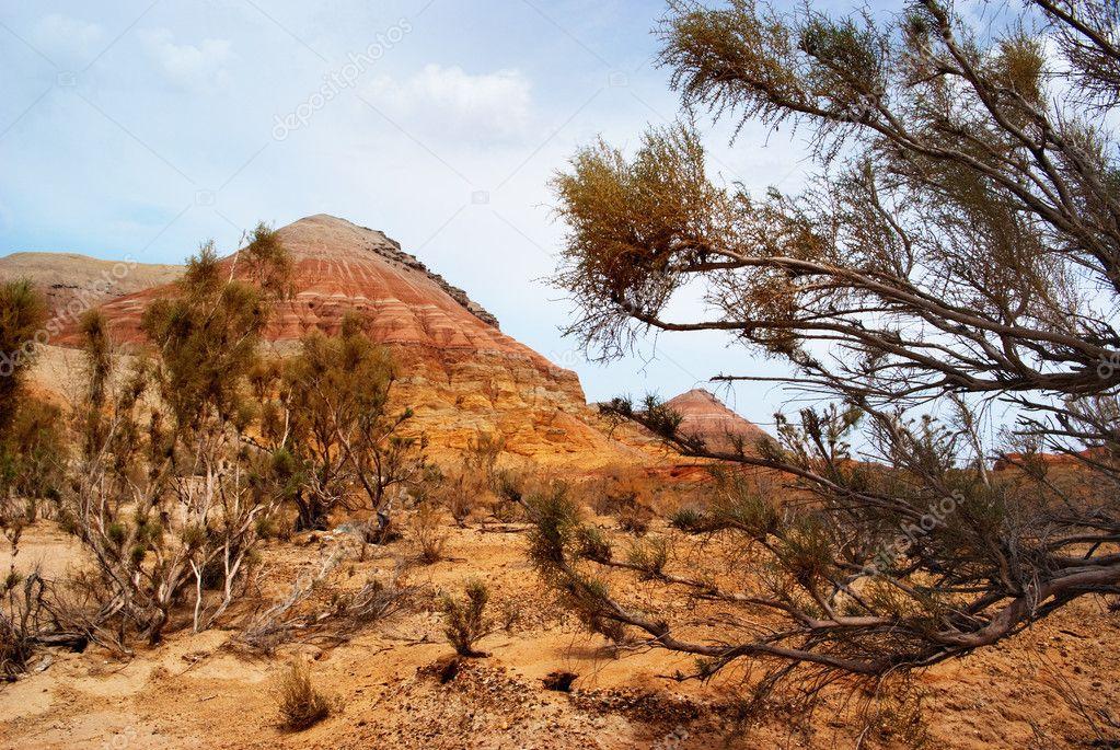 Desert mountains in Kazakhstan
