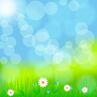 Beautiful green spring meadow