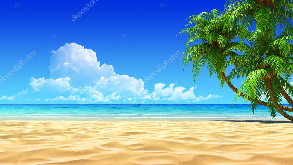 Palms on empty idyllic tropical beach