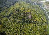 hustý les nadhled, brno, Česká republika