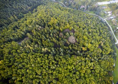 Dense forest aerial view, Brno, Czech Republic