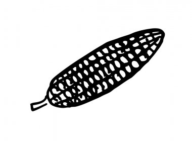 Corn doodle