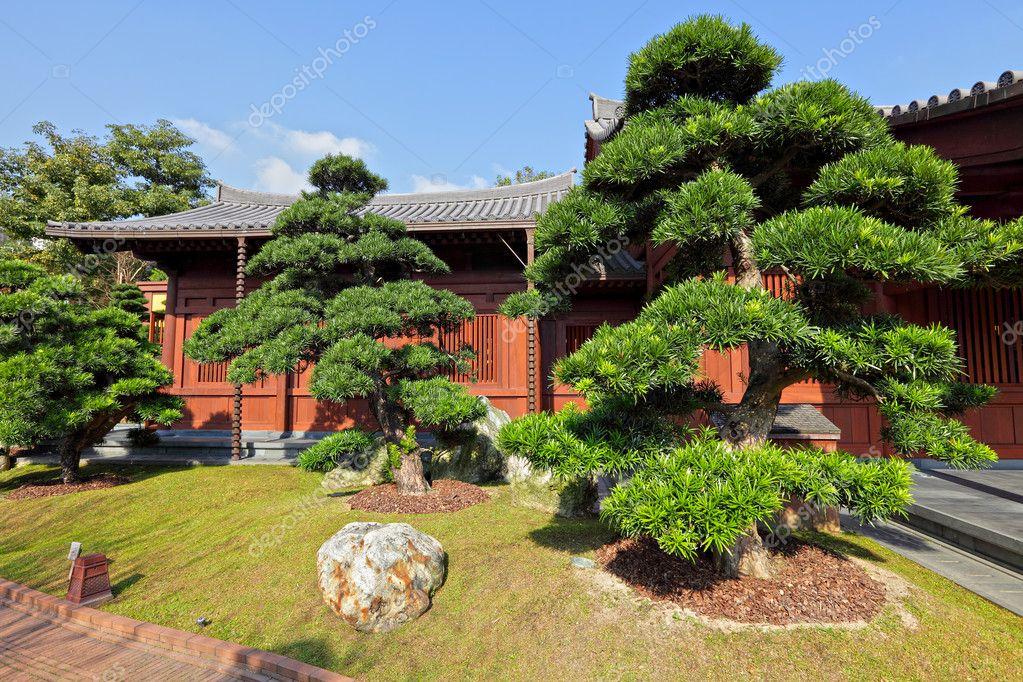 Jard n chino fotos de stock leungchopan 8747413 for Jardin chino