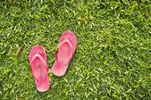 žabky na trávě
