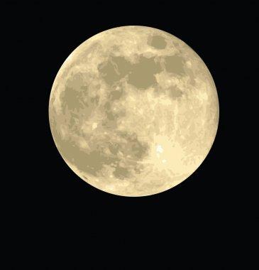 Full moon night vector illustrations