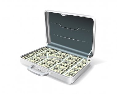 Business briefcase with the money.