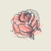 Művészi Rózsa vektoros illusztráció