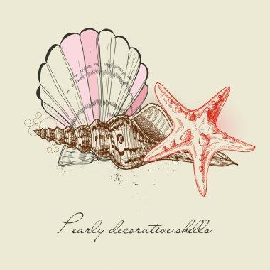 Shells and starfish background