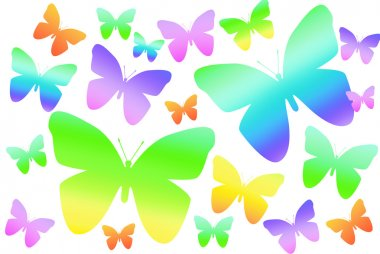 Rainbow butterflies on white background