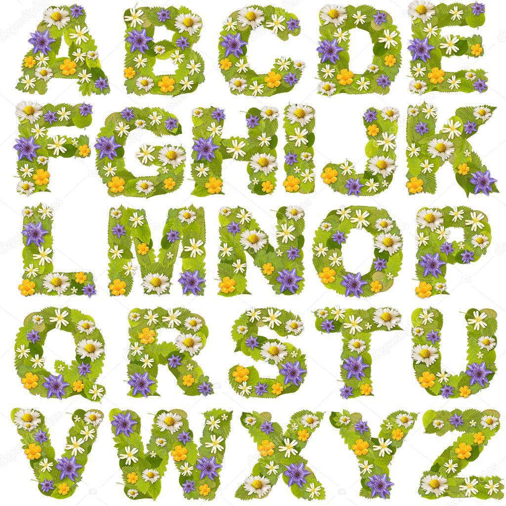 Green leaf whit flower fonts stock photo grafvision for Alphabet garden designs