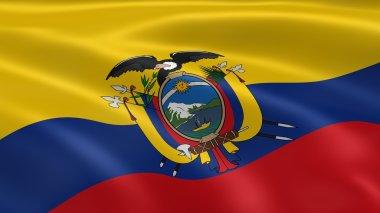 Ecuadorian flag in the wind