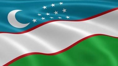 Uzbek flag in the wind