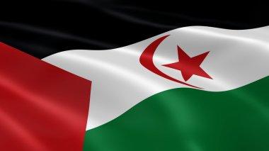 Western Saharan flag in the wind