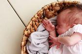 Fotografie roztomilé děťátko spí