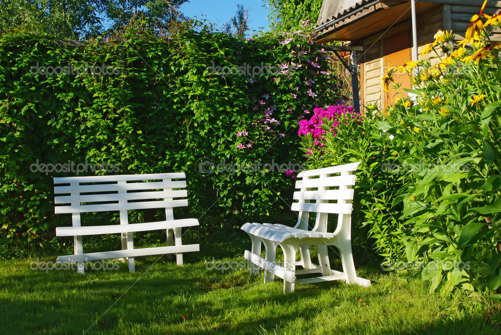 White benches in a secluded corner garden