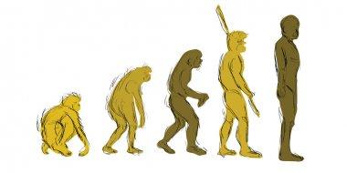 Evolution Hand-Draw