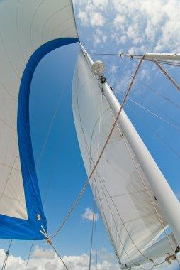 Sail Boat - catamaran.