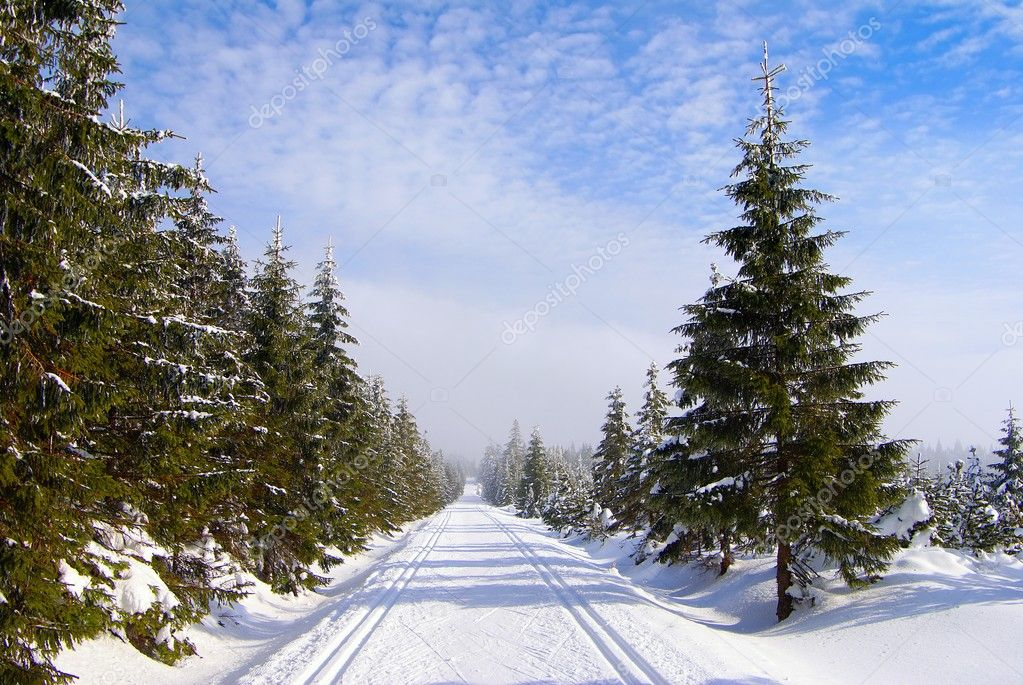 Modified cross country skiing way