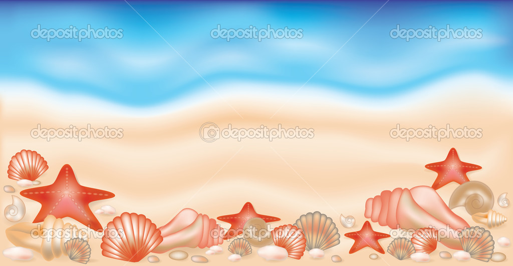 Summer banner on sand with shells and starfishes