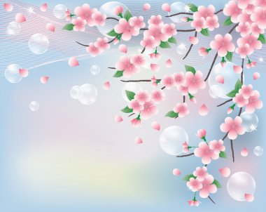 Spring card with sakura. vector illustration