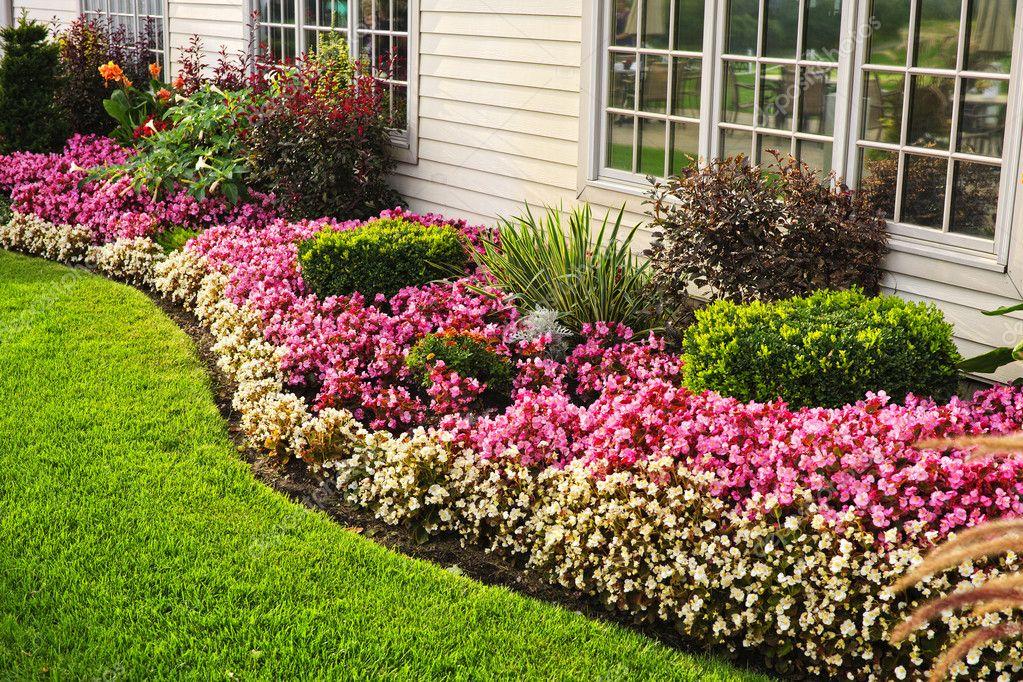 Muito jardim de flores colorida — Fotografias de Stock © elenathewise  WT61