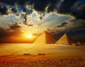 Fotografie Giza