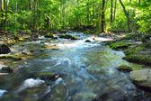 Fotografie řeka