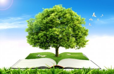 Book with tree on natural background. education concept