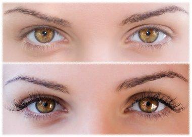 Close Beautiful eyes with natural eyelashes to and false eyelashes after stock vector