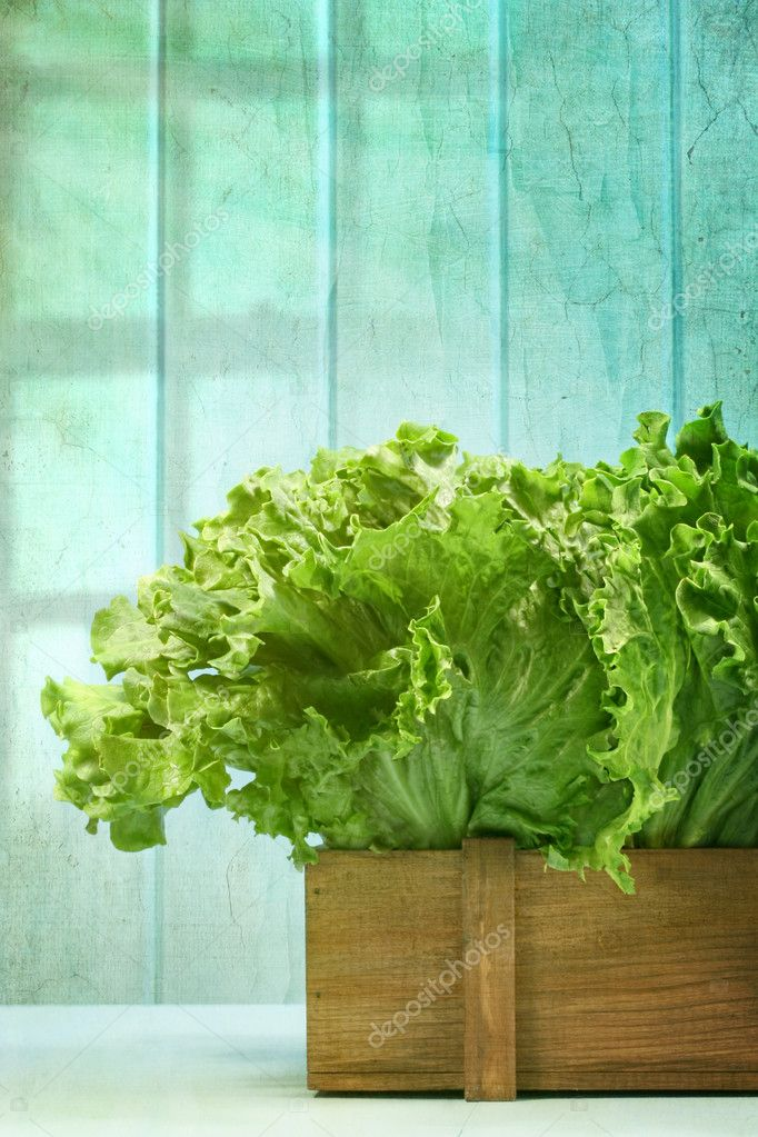 Lettuce in wooden box against grunge background
