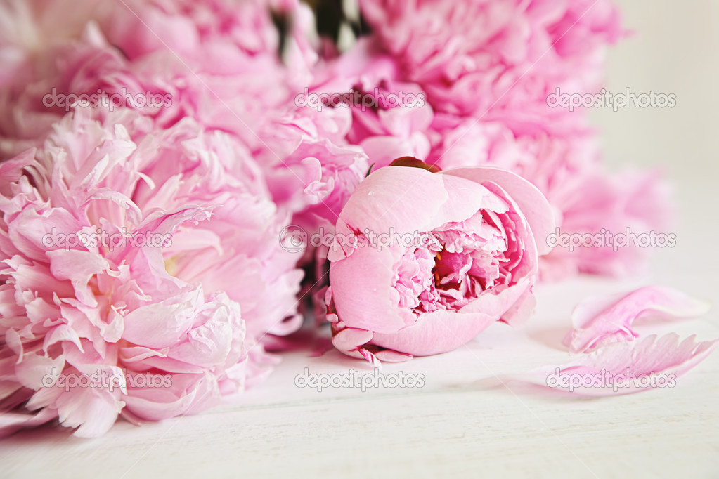 Pink peony flowers on wood surface