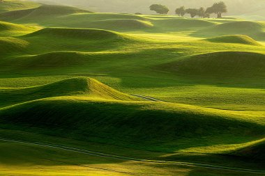 Golf place with nice green