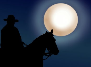 Cowboy at night stock vector