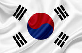 Photo South Korea waving flag