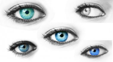 Collection of blue woman eyes isolated on white stock vector