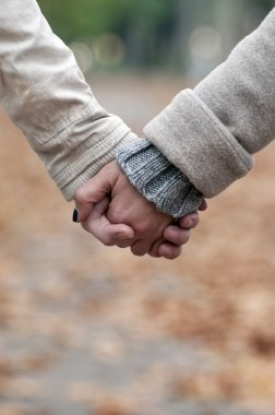 Closeup of couple holding hands while walking in park