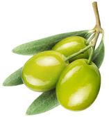 Fotografia olive con foglie su un bianco
